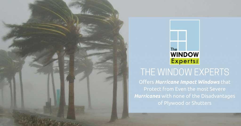 florida window experts postcard