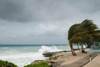 hurricane in palm beach